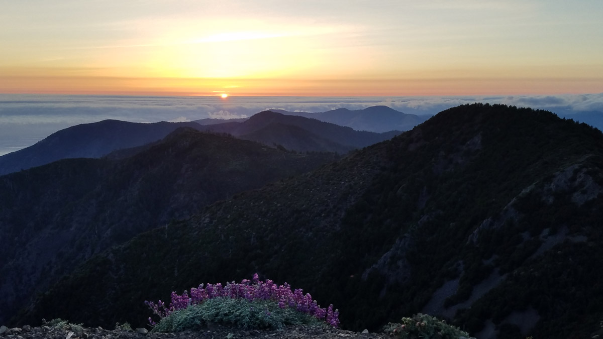 Fascinating sunset scenery in Lost Coast Trail