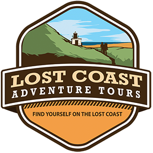 Lost Coast Adventure Tours