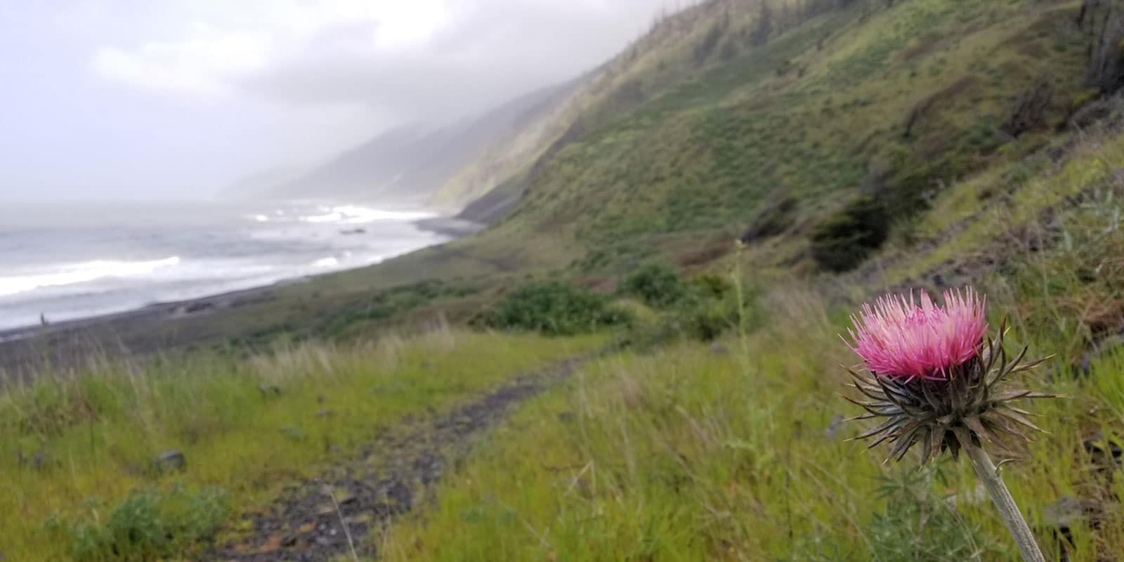 Lost Coast Trail Hidden Valley Hike
