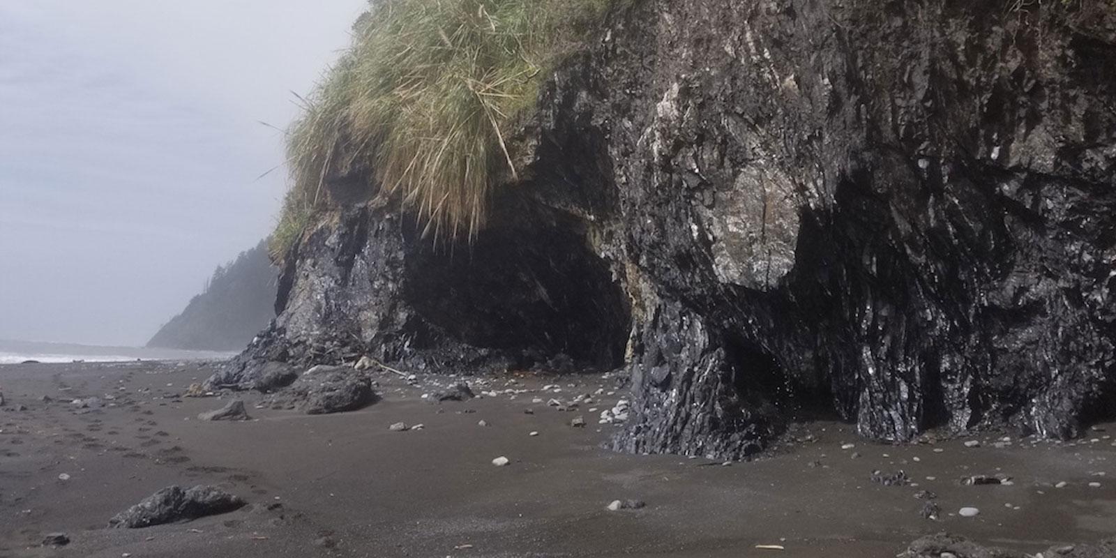 Lost Coast Trail Whale Gulch Hike